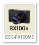RX100V 「DSC-RX100M5」 デジタルカメラ サイバーショット