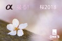 桜2018,α<アルファ>,デジタル一眼カメラ