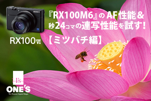 DSC-RX100M6,RX100VI,作例,レビュー,ソニーストア,sony,24-200mm,広角望遠レンズ,AF性能,連写性能