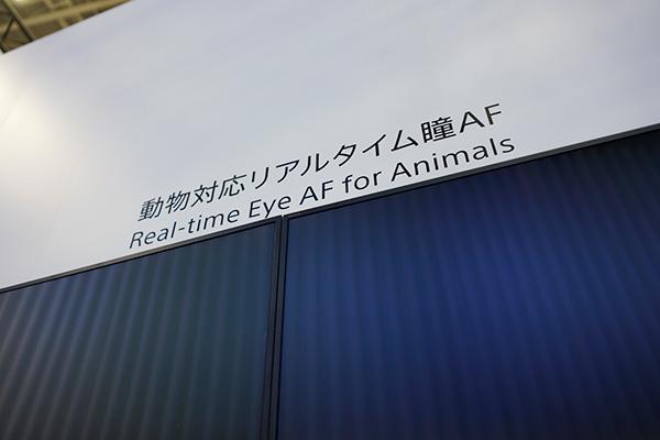 CP+2019,ソニーブース,レビュー,レポート,動物の瞳AF
