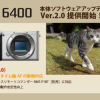 α6400,ilce-6400,動物のリアルタイム瞳AF,アップデート