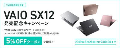 VAIO SX12,VJS1211,VAIO5週年記念,勝色