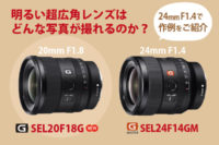 SEL20F18G,SEL24F14GM,作例
