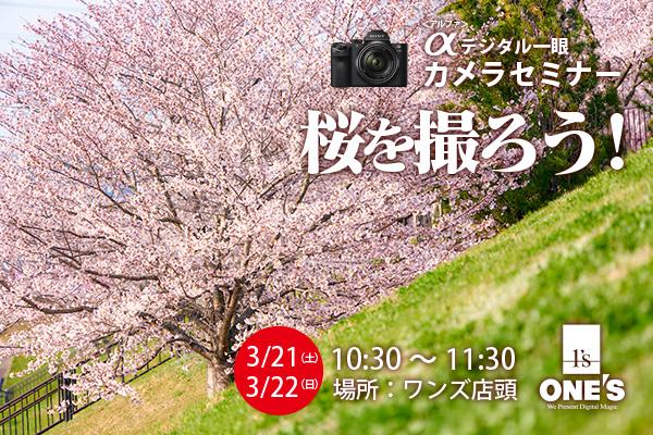 デジタル一眼カメラセミナー,桜を撮ろう