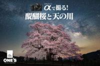α<アルファ>で撮る!,醍醐桜,天の川,SEL20F18G,α7RIII