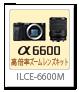 ILCE-6600M,高倍率ズームレンズキット