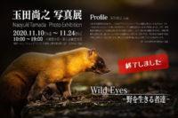 玉田尚之,写真展,wild eyes,野を生きる者達