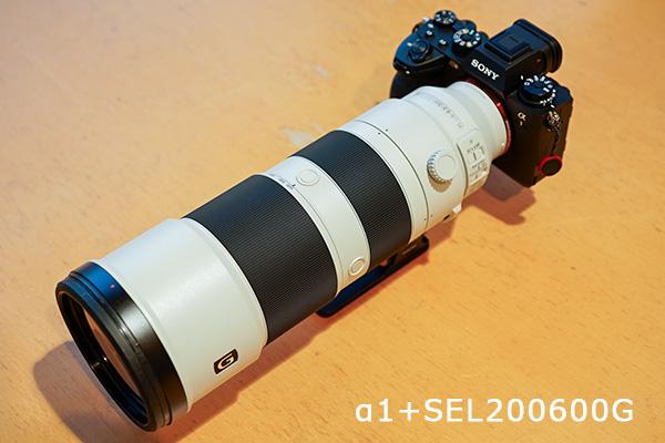 α1,ilce-1,sel200600g,野鳥,レビュー
